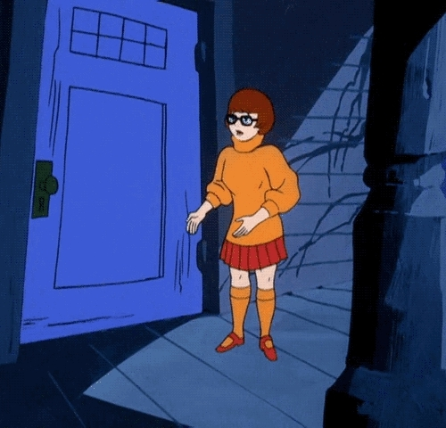 animation, cartoons, gif, my gif, reaction gif, scared, scary, scooby-doo, scooby-doo gif, shaggy, television, velma dinkley, vintage, vintage television,  GIFs