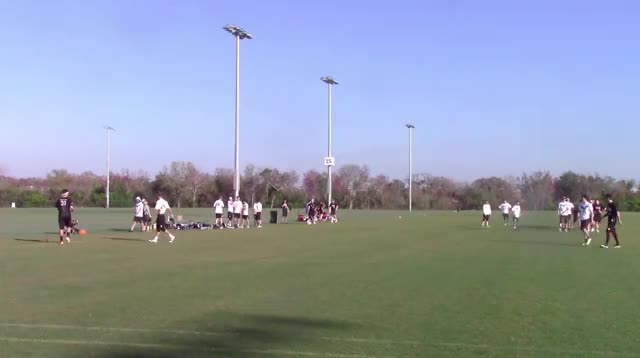 Watch and share Sideline1 GIFs by Gamecock Ultimate Film Clips on Gfycat
