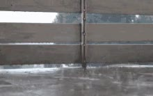Watch and share Rain Wet GIFs on Gfycat