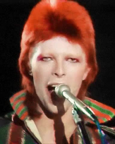 Watch [X] GIF on Gfycat. Discover more *, David Bowie, Favourite person, gif GIFs on Gfycat