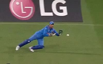 Watch and share Cricket GIFs and Sports GIFs on Gfycat