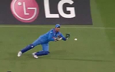 cricket, sports, Cricket India GIFs