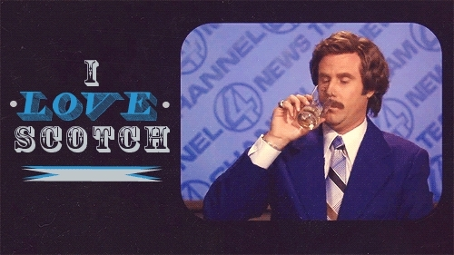ron burgundy, whiskey, will ferrell, guide to different types of whiskey GIFs