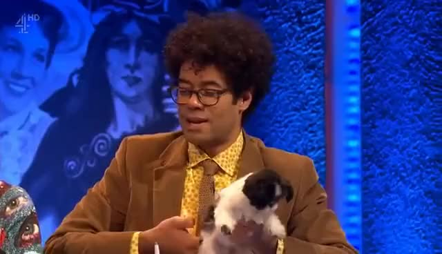 Watch Ayoade puppy GIF on Gfycat. Discover more Richard Ayoade GIFs on Gfycat