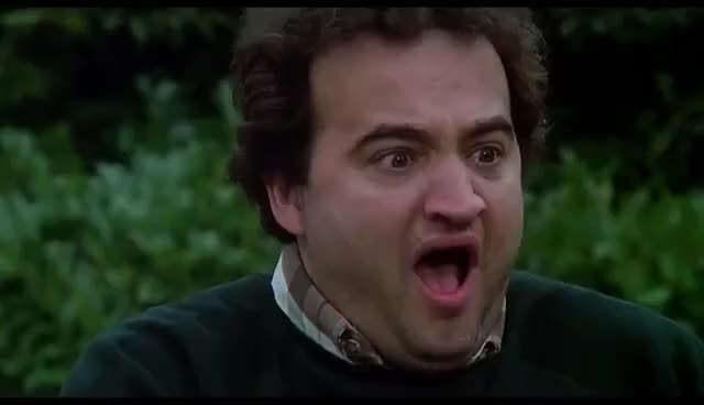 Watch and share Animal House GIFs and The Bar GIFs on Gfycat