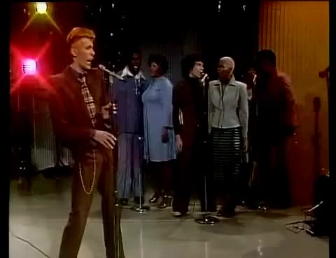 Watch bowie 1984 GIF on Gfycat. Discover more 1984, bowie GIFs on Gfycat