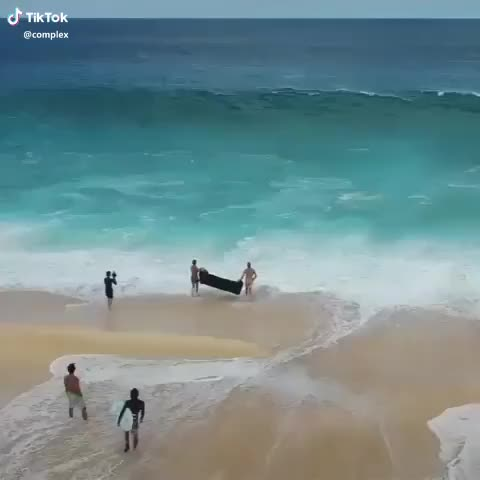 Watch and share Complex(@complex) On TikTok: People Will Do Anything For The Gram. 😭[via Clarklittle/IG] #saveouroceans #summervibes #naturecam GIFs by Funnygifs on Gfycat