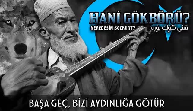 Watch and share Hani Gökbörü?   Neredesin Bozkurt? GIFs on Gfycat