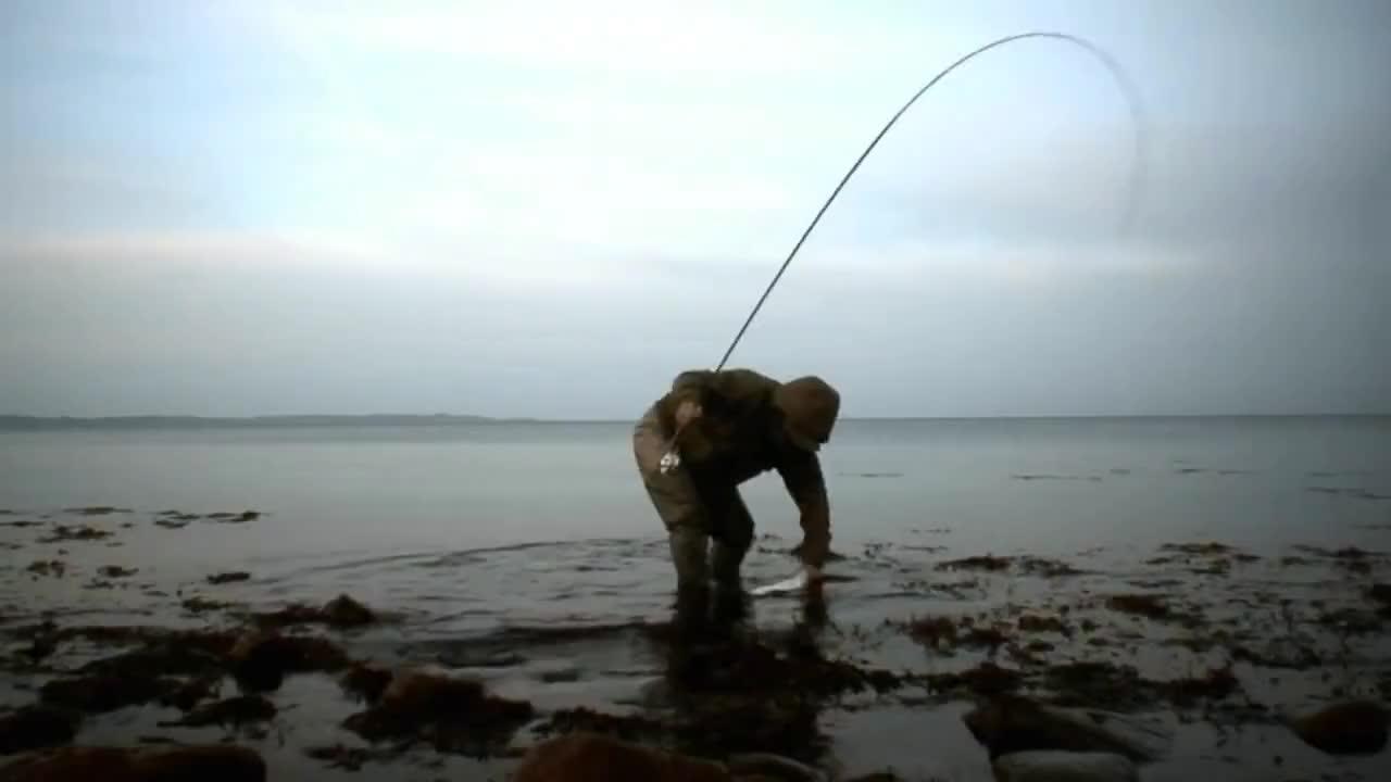 copenhagen, fisketur, fluefisker, kystfisker, Fishing with Rod: Sea trout in Denmark (Havørred fiskeri i Danmark) GIFs