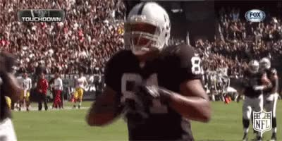 Watch and share NFL: Teams: Oakland Raiders GIFs on Gfycat