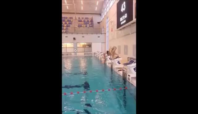 Watch and share Zwemmen GIFs and Sport GIFs on Gfycat