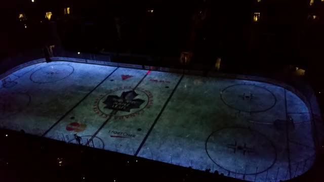 Watch and share Leafs Nation GIFs and Projection GIFs by Microcosmos on Gfycat