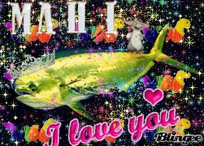 Watch and share Mahi I Love You GIFs on Gfycat