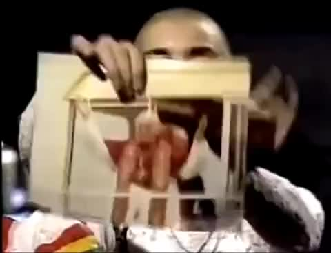 Watch and share Sinead O'Connor Ripping Pope Picture - Fight The Real Enemy GIFs on Gfycat