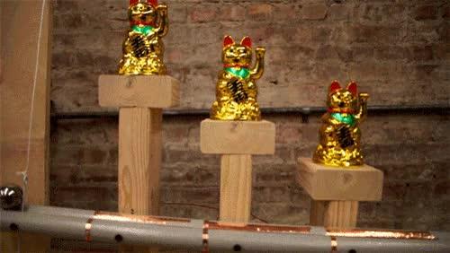 Watch and share Rube Goldberg GIFs on Gfycat