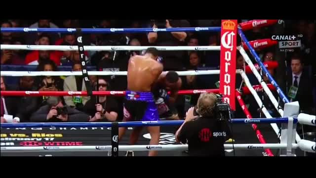 Watch Errol Spence Jr drops Lamont Peterson GIF by @redditmedia on Gfycat. Discover more boxing GIFs on Gfycat