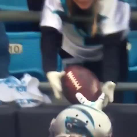 Watch this carolina panthers GIF on Gfycat. Discover more carolina panthers, football, panthers GIFs on Gfycat