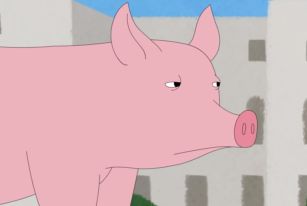 confused, confusion, eye, pig, really, roll, seriously, wait, what, worry, Confused pig GIFs