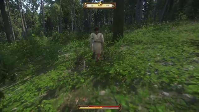 Watch Kingdom Come Deliverance 10 GIF by @shaun_collins on Gfycat. Discover more related GIFs on Gfycat