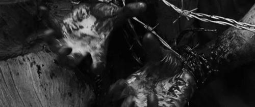 Black and White, Bloody, Dark, Eden Lake, Horror, Morbid, Torture, mygif, Eden Lake (2008) GIFs