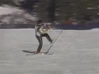 Watch and share Ski, Ski Fail GIFs on Gfycat