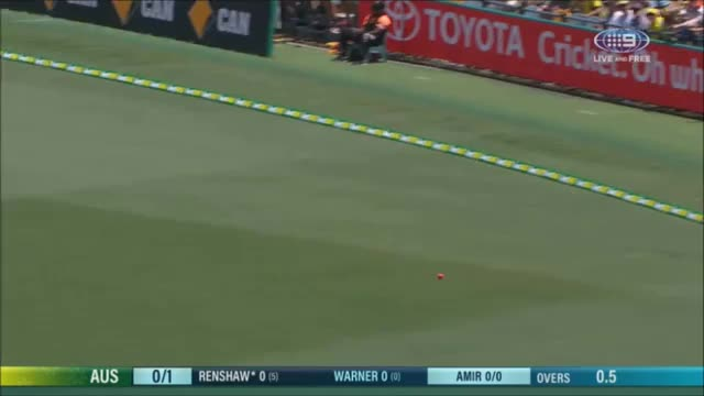 Watch and share Cricket GIFs by awoff1 on Gfycat