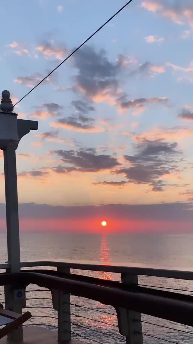 Watch and share __bygracekim - 2019-10-05 18:35:19:679 GIFs by Charles Carmichael on Gfycat