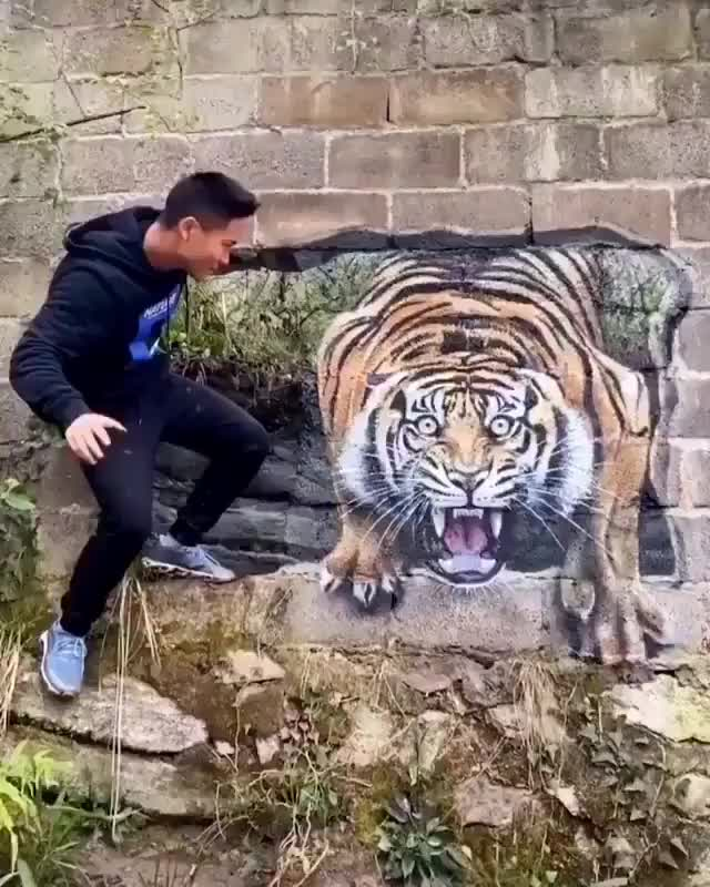 Watch and share Tiger GIFs by vani  on Gfycat