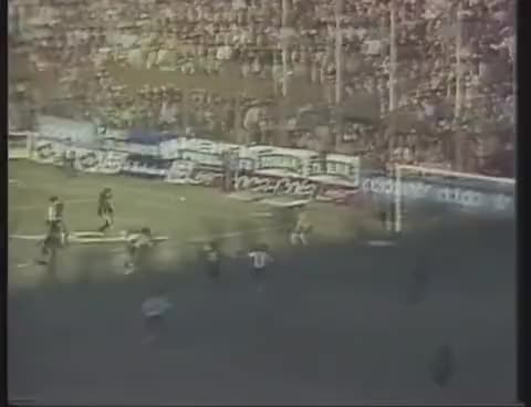 Watch newells 88 GIF on Gfycat. Discover more campeon, nob GIFs on Gfycat