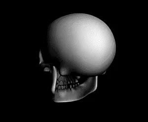 Watch and share Skull GIFs on Gfycat