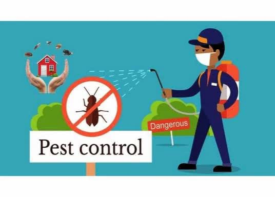 Watch and share Pest Control London GIFs and Pest Control Surrey GIFs by Swiftkill on Gfycat
