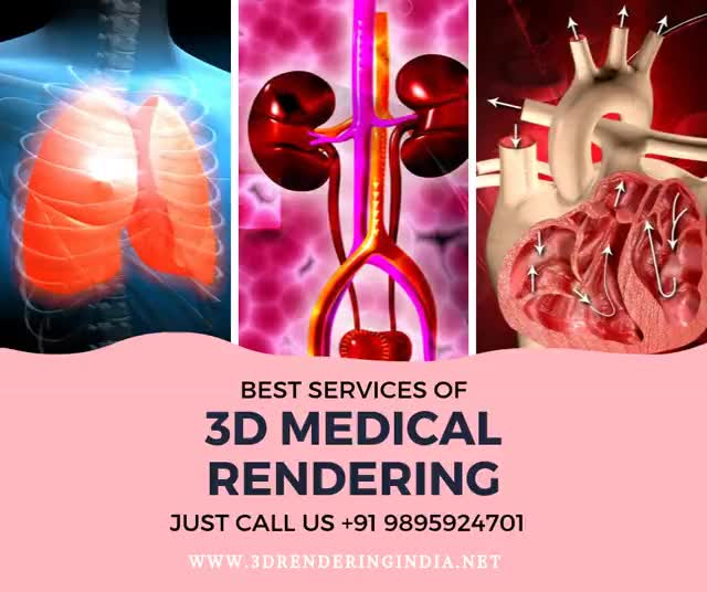 Watch and share 3D Medical Rendering GIFs by 3D Rendering India on Gfycat