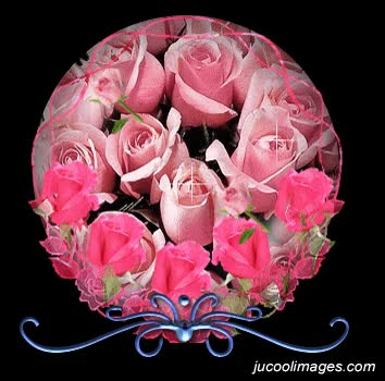Watch and share Pink Y Flowers Roses Animated Pictures Images Photos GIFs on Gfycat