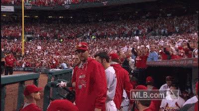 St. Louis Cardinals GIFs