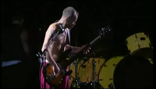Red Hot Chili Peppers - Bass Solo & Don't Forget Me, Live Chorzów, Poland 2007 - Proshot GIFs