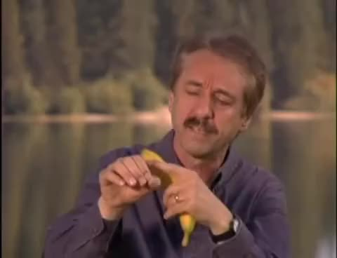 Watch and share Ray Comfort On The Banana, In Context [HQ] GIFs on Gfycat