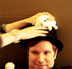 Watch Patrick Stump and tiny, fluffy animals. The Rest Of Us The R GIF on Gfycat. Discover more baby chicks, bunnies, fall out boy, fluffy animals, patrick stump GIFs on Gfycat