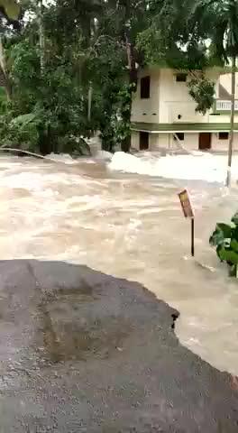 Watch Kerala,Thrissur Arattupuzha, karavanoor river flood disaster 2018. GIF on Gfycat. Discover more river flood, 2018, Aratupuzha, Disaster, cheriya palam, flood, karuvanoor, kerala, rescue, thrissur GIFs on Gfycat