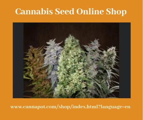 Watch and share Cannabis Seed Online Shop GIFs on Gfycat