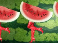 Watch and share Watermelon GIFs on Gfycat