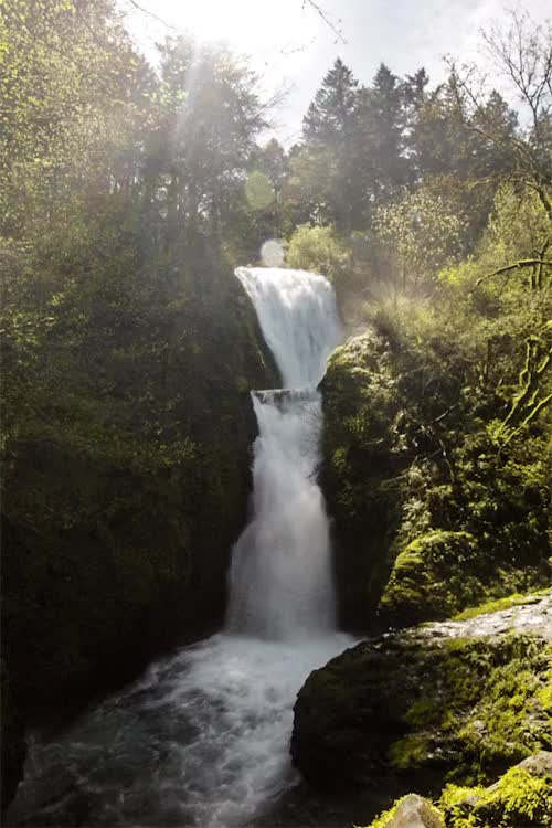 Watch Bridal Veil Fallsby czechthecount: instagram | facebook | 500px | society6 GIF on Gfycat. Discover more related GIFs on Gfycat