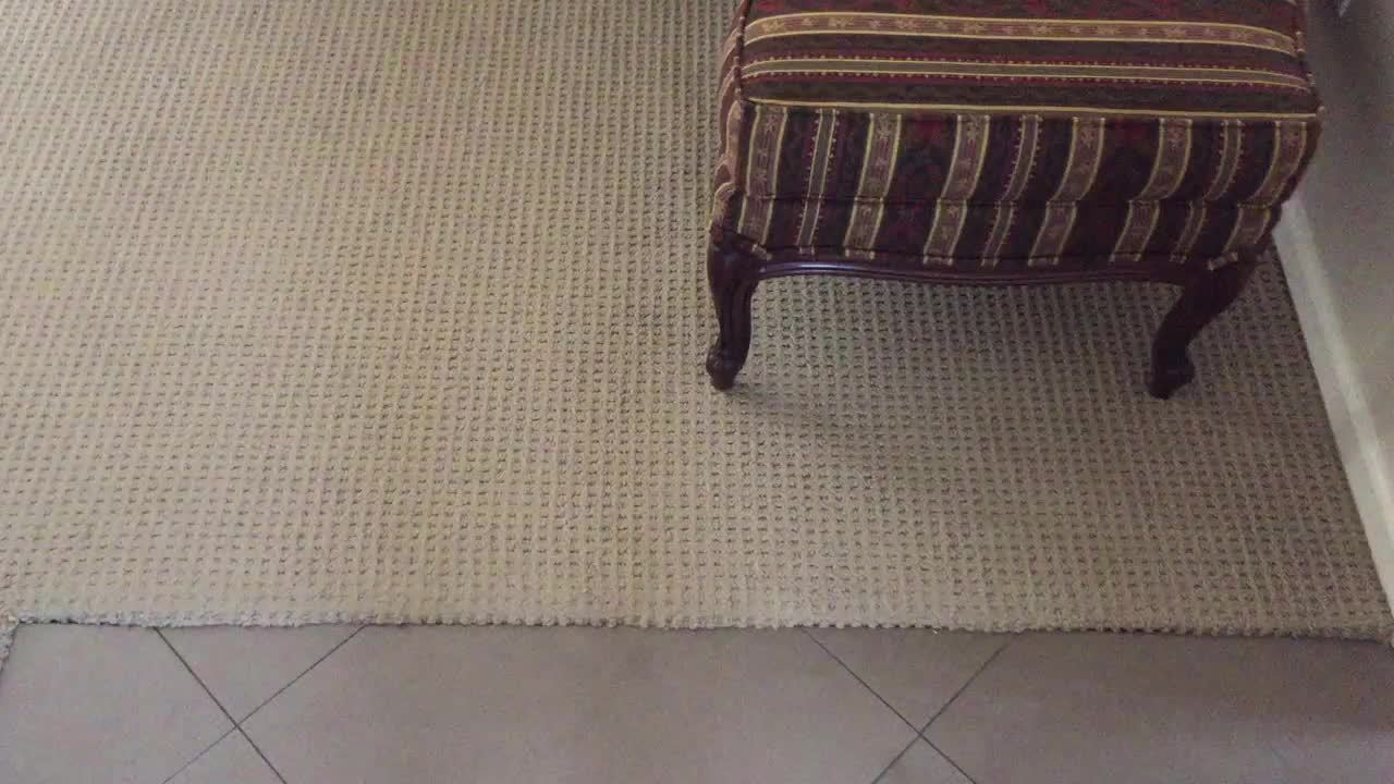 goldenretrievers, This lazy dog... GIFs