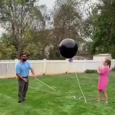 Watch and share To Have A Gender Reveal Party GIFs by MyNameGifOreilly on Gfycat