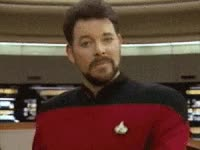 Watch star trek, new year, holiday GIF on Gfycat. Discover more jonathan frakes GIFs on Gfycat