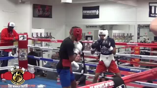 Watch Devin Haney vs Shakur Stevenson Sparring highlights GIF on Gfycat. Discover more Devin Haney, Mayweather gym, People & Blogs, Shakur Stevenson, WAR SPORTS, boxing, sparring, sparring highlights GIFs on Gfycat