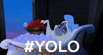 i regret nothing, yolo, you only live once, YOLO - You Only Live Once GIFs