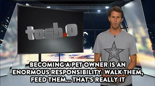 Watch and share Daniels Tosh GIFs on Gfycat