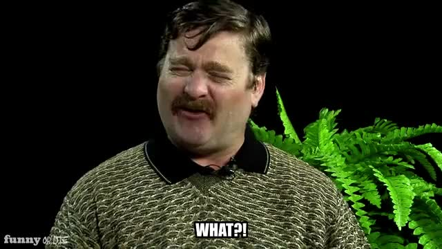 Watch this between two ferns GIF by Funny Or Die (@funnyordie) on Gfycat. Discover more Between Two Ferns with Zach Galifianakis, FoD, Funny or Die, Sean Penn, between two ferns, between two ferns with zach galifianakis, fod, funny or die, funnyoride, sean penn, what, zach galifianakis GIFs on Gfycat