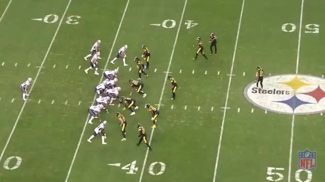Watch and share Hogan TD GIFs by Andrew Callahan on Gfycat