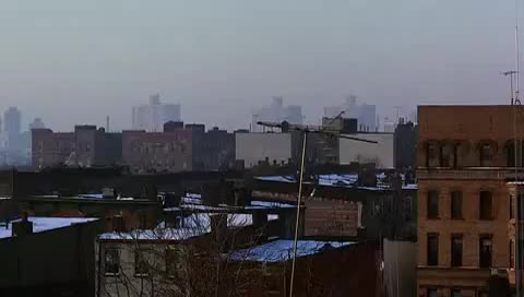 City, avoid, coralpring, credit, loan, modification, scam, Coming To America _ 1988 _ Good Morning My Neighbours ActionJC365 YouTube GIFs
